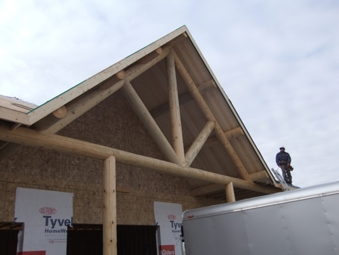 Log truss, purlins & posts