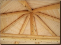 Interior Log Roof